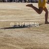 仕上げ期開始・脚筋力(中殿筋)【仕上げ期4-1-2】ビルドアップ・トレーニング記録