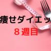 【検証】脚痩せダイエット8週目!!食事メニューも大公開!