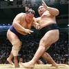 引き技で墓穴の鶴竜、北勝富士に完敗