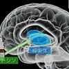 じじぃの「根拠に基づく医療・思いこみはなかなか消えない!その数学が戦略を決める」