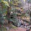 2020.11.28 滝入不動尊と羽梨山神社