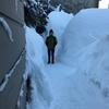 ❆雪やこんこん霰やこんこん❆