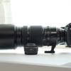 【FUJIFILM XF100-400mm F4.5-5.6R LM OIS WR レビュー】重たい!デカい!高い!けど良いレンズ