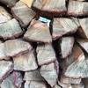薪のカビ問題と対策【その1】