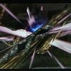 【MHXX】最小金冠コンプへの道⑱ セルレギオス(ブシドー双剣)他 ~レギオス武器で遊ぶ~