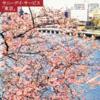 結局、サニーデイサービスの名盤「東京」のジャケットはどこで撮影可能なのか問題