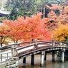 知恩院の紅葉②観光23...過去20181201京都