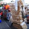 クタ市場(Kuta Market) -2-