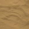 鳥取旅行記③鳥取砂丘では貴重な体験ができます。