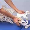 坐骨神経痛の治療10(リーズナブルなテクニシャン整体、墨田区の大和田筋整復院)