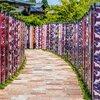 関西を代表する紅葉スポット『京都・嵐山』