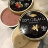 ご当地アイス:soy gelato organic