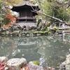 長濱八幡宮 放生池(滋賀県長浜)