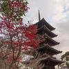 2016年末一人旅 第三週(138)東寺の五重塔