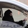 サウジ、女性の運転容認 宗教界の反対押し切る