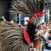浅草サンバカーニバルの鳥