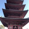 【アラ還さんぽ】アド街で思い出の池上本門寺が映った。ああ、東京が恋しい。