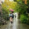 本日の浮遊〜雨の日〜