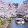 【保存版】日本全国!一度は乗ってみたい遊覧船&クルーズ特集!
