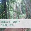 【高尾山】3号路登り~明るい森の中を行く~