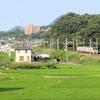 讃岐府中駅で予讃線を走る特急アンパンマン列車を撮影