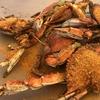 アナポリスでカニ食べた≧[゚_゚]≦ enjoying crabs in Annapolis