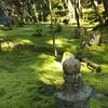 湖東三山紅葉めぐり2 お次は西明寺の苔と紅葉、三重塔です(^^)、CNNの日本の最も美しい場所31選の一つ!