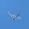 令和2年2月1日に見た「冬空の景色」~ジェット機と鳥と月と~