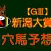 【GⅢ】新潟大賞典 結果