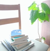 読書の秋と積読本。そして好きなことしたいことを見つけるための意外すぎる方法とは