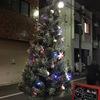 クリスマスツリーを準備しました。