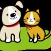 札幌市で動物愛護条例が10月から施行。犬猫10頭以上飼育の場合は届け出が必要。違反者は5万円以下の過料!