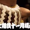 大相撲11月場所。横綱鶴竜の優勝について思うこと。