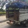 アフリカの注目リゾート、ザンジバルへ行ってきました❤️