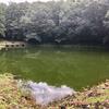 白鳥沼(群馬県前橋)