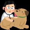 【予告】今年もやります! ~ワンちゃん健康診断キャンペーン~