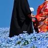 【ベルロード サブスク婚活】オンラインで婚活できるサブスク婚活 口コミ・評判