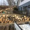 薪用の木と単管パイプ