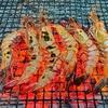 【マレーシアでエビ釣り】クアラルンプール EBI FISHINGでタイガーエビを釣る。 値段・行き方まとめ