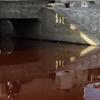 京都鴨川の真赤に染まる原因は!京都市南区上鳥羽勧進橋町で原因不明の怪奇