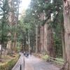 平泉から松島へ