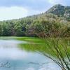 タイズ池(岡山県玉野)