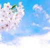 2019年3月6日は「啓蟄」~何の日か知ってる?(*´▽`*)~