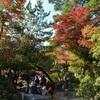 安芸の宮島紅葉狩り2017 インスタ映えスポットを巡ってみた② 紅葉谷公園