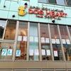 【代々木】犬カフェ! ふれあい広場&レンタル犬『DOG HEART』