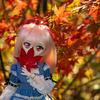 まだまだ撮れる紅葉とドール♪ 近所の公園で撮ってきました!