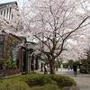 旧横須賀鎮守府長官官舎 一般公開 2017.4月4~9日