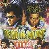 【映画】「DEAD OR ALIVE FINAL」―横浜は全土が中華街となりました―