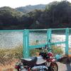 直島宮浦の池(仮称)(香川県直島)