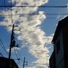 作曲工房 朝の天気 2018-08-17(金)晴れ、強風北風。